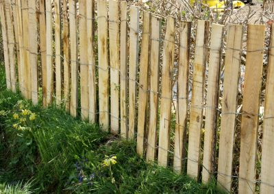 clôture ganivelle portail bois châtaignier Kastané #029