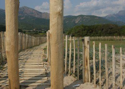 clôture ganivelle portail bois châtaignier Kastané #021