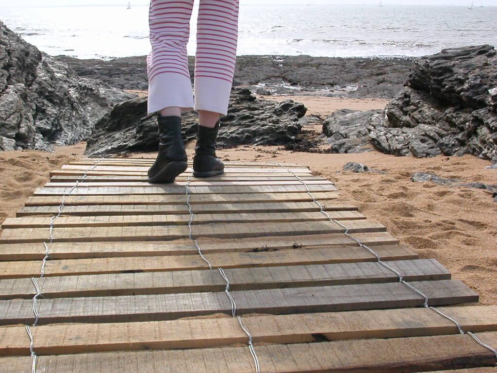 clôture ganivelle portail bois châtaignier Kastané #020