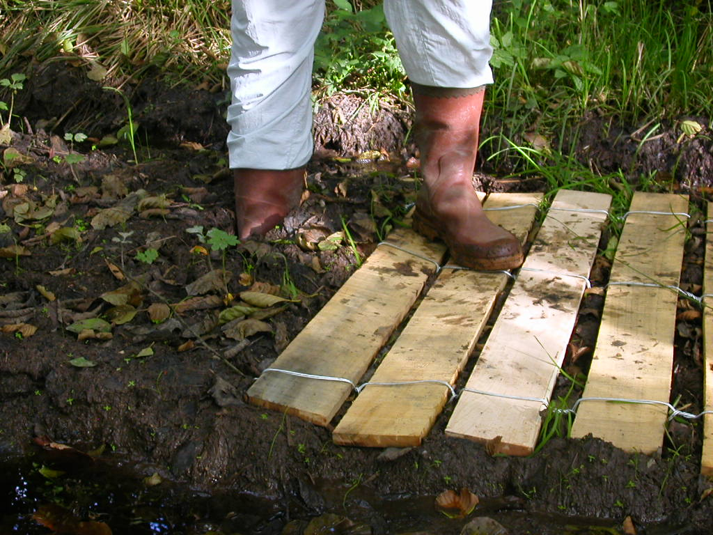 clôture ganivelle portail bois châtaignier Kastané #012