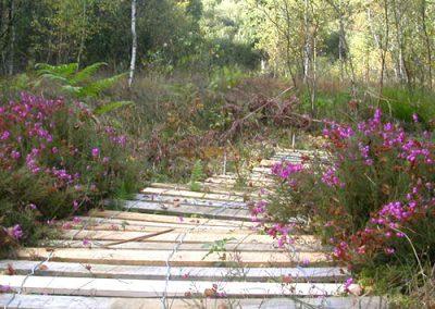 clôture ganivelle portail bois châtaignier Kastané #116