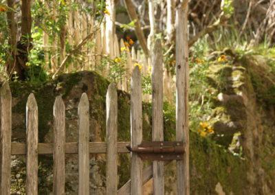 clôture ganivelle portail bois châtaignier Kastané #071