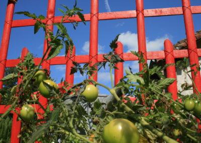 clôture ganivelle portail bois châtaignier Kastané #067