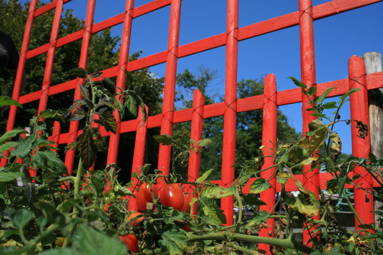 clôture châtaignier ganivelle Kastané
