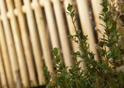 clôture ganivelle portail bois châtaignier Kastané #098